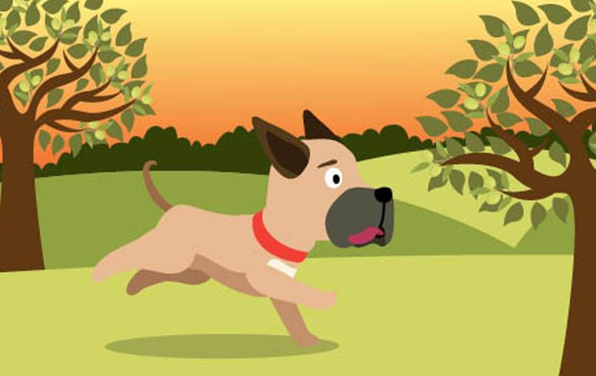 allergies-in-pets-seasonal