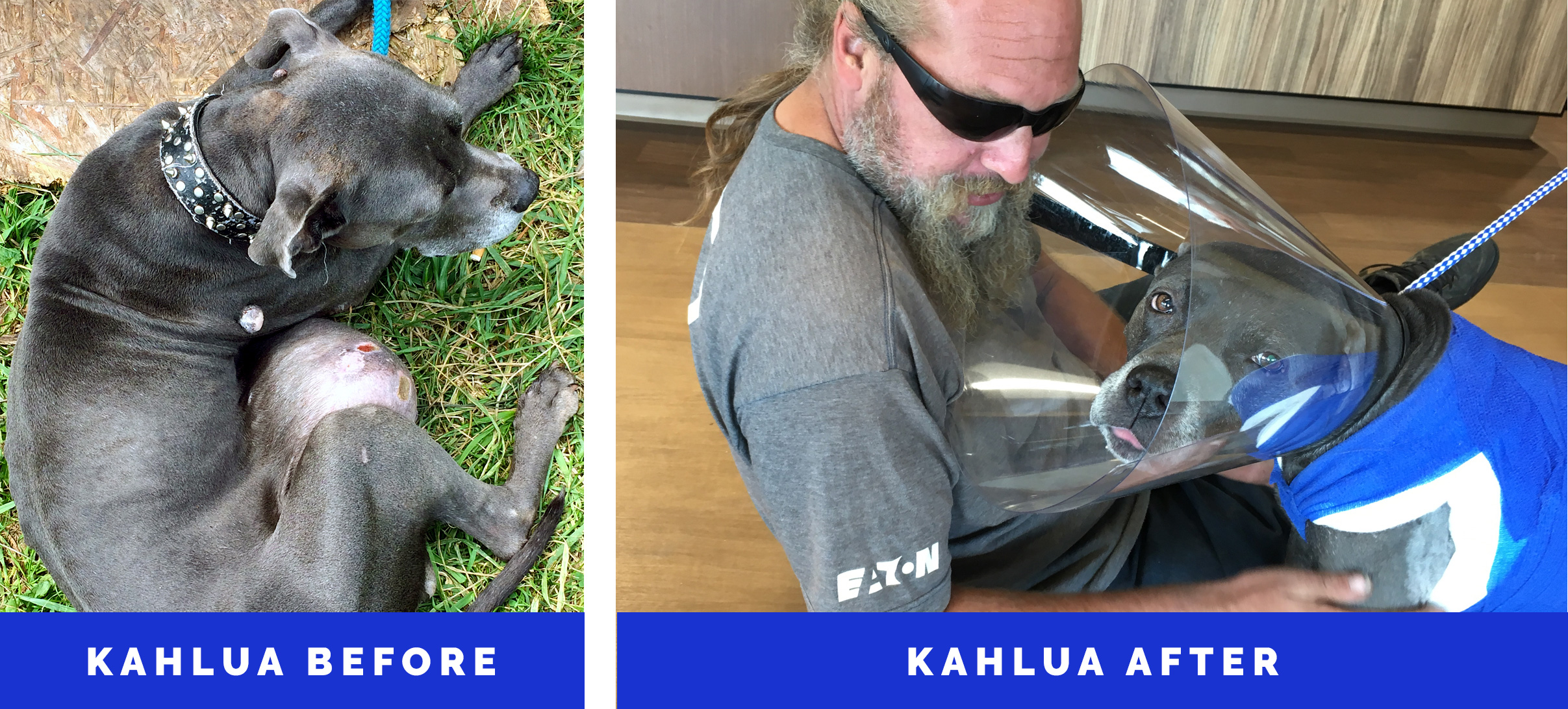 ba-kahlua-01