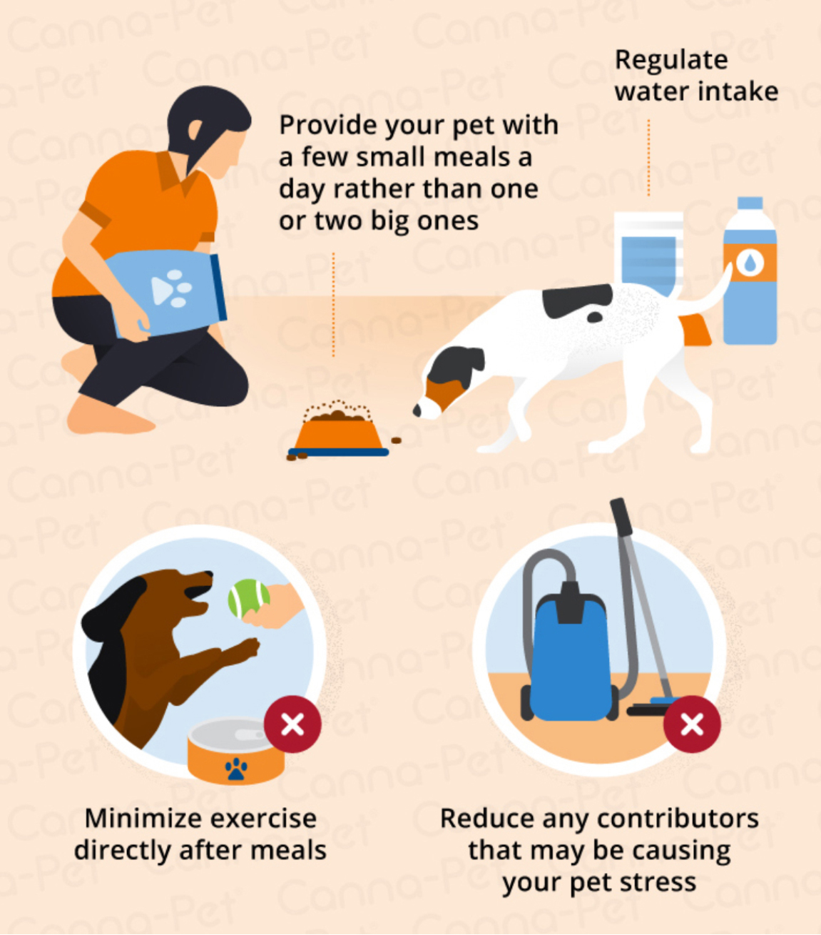 bloat-prevention-d