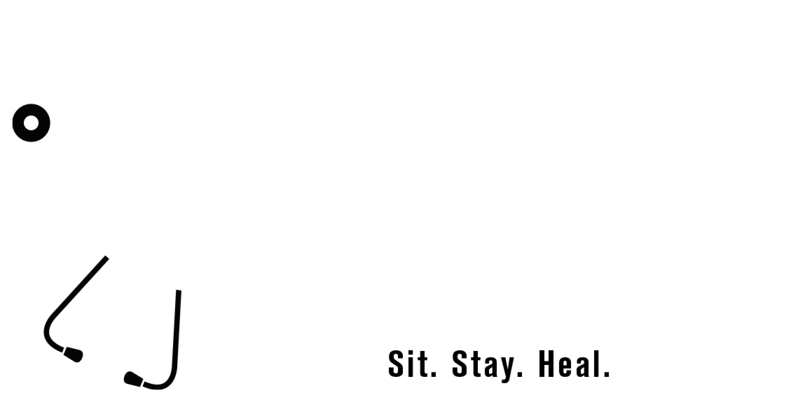 dog-doc-logo