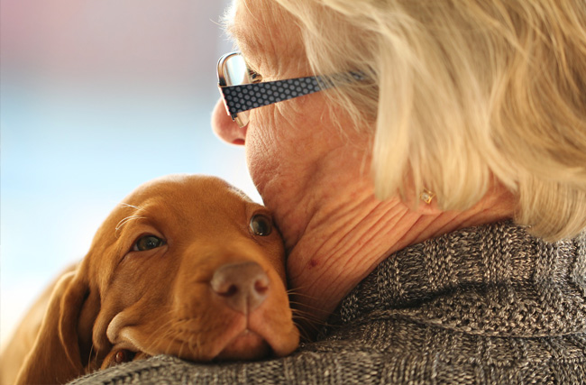 How Does Pet Therapy Benefit People with Dementia?