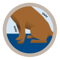 icon-arthritis-getting-up
