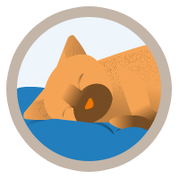 icon-arthritis-lethargy-cat