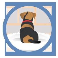 icon-arthritis-rug