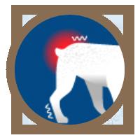 icon-arthritis-sore-joints