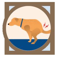 icon-arthritis-squatting