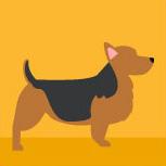 icon-australian-terrier