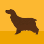 icon-cocker-spaniel