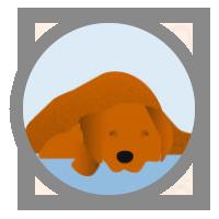 icon-collapse