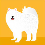icon-samoyed