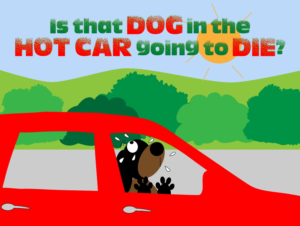 Is that dog in the hot car goiing to die?