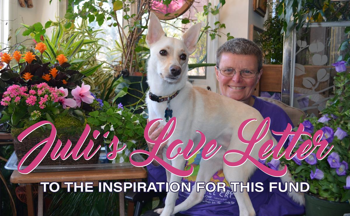 Ellie's Rainy Day Fund