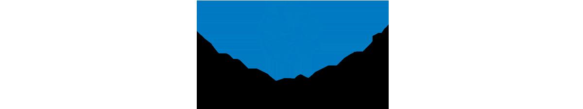 The Neon Logo