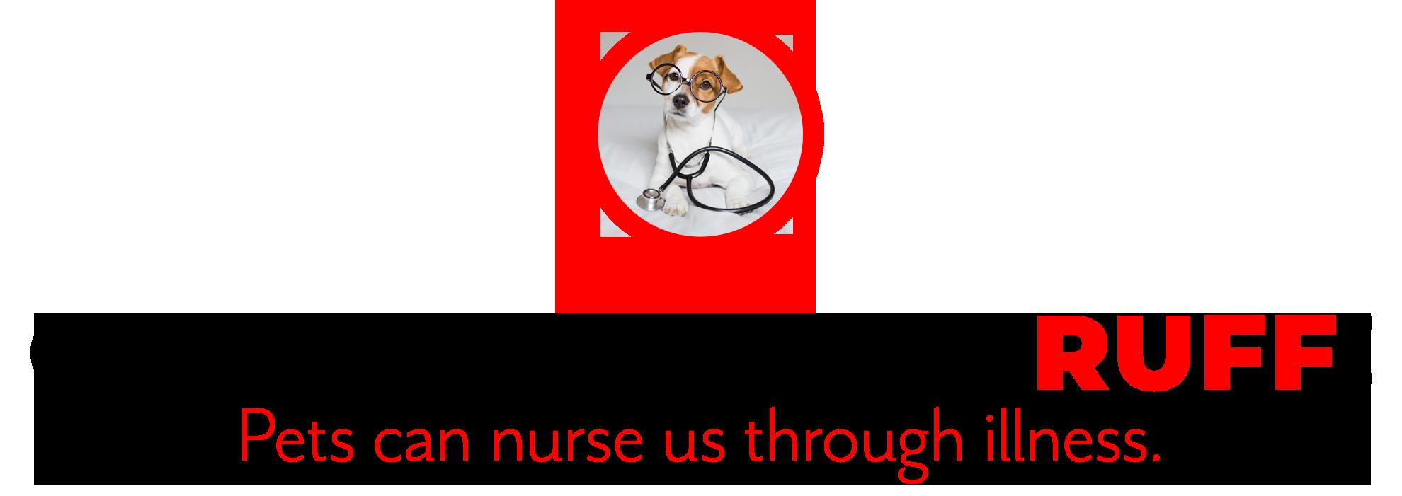 pets-nurse-us-through-illness-hdr-a