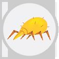 seasonal-allergies-icon-mites