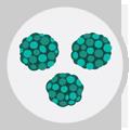seasonal-allergies-icon-mold