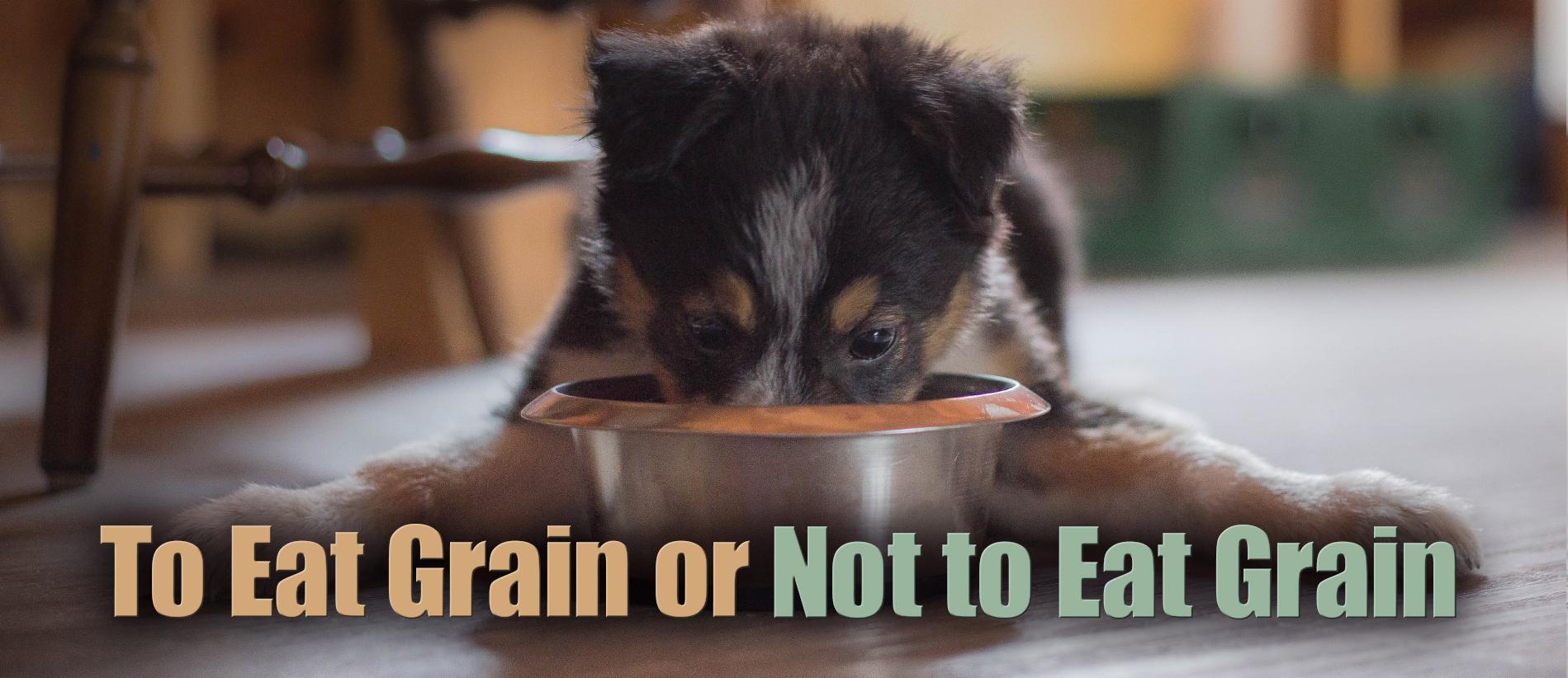 to-eat-grain-hdr-e